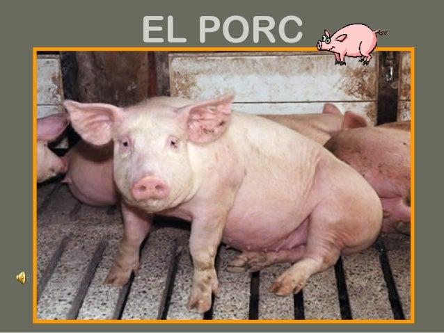 EL PORC