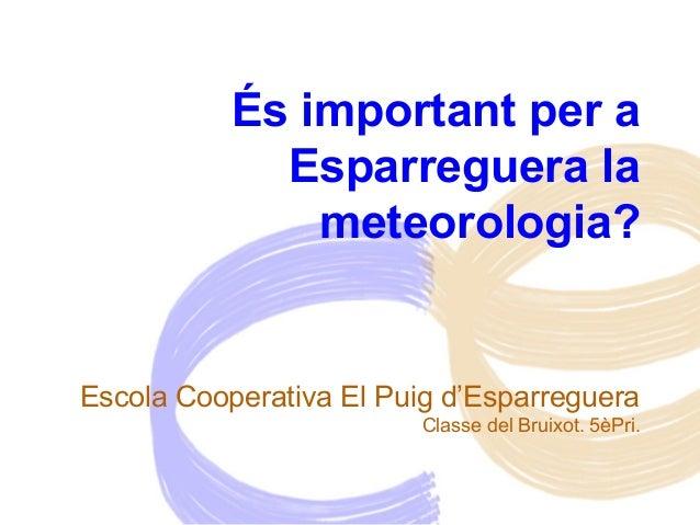 És important per a Esparreguera la meteorologia? Escola Cooperativa El Puig d'Esparreguera Classe del Bruixot. 5èPri.