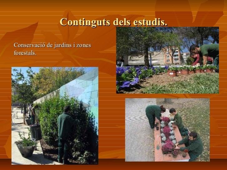 Cicle formatiu grau mitja jardineria institut ribera baixa for Estudiar jardineria