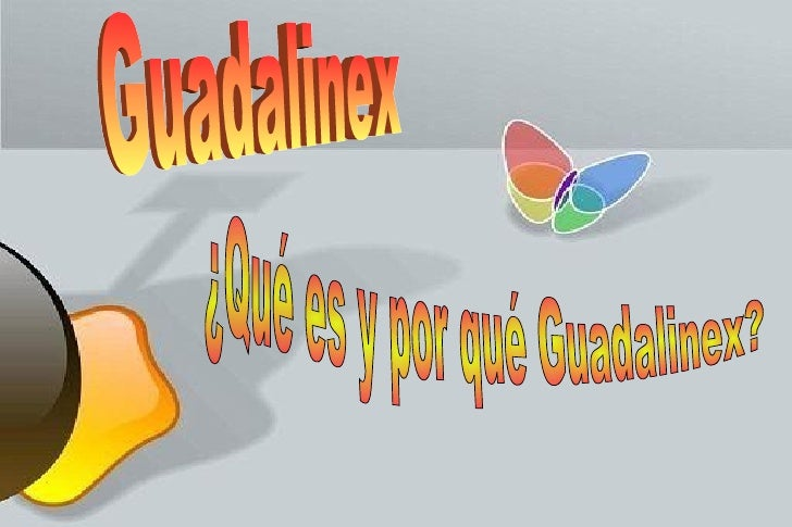 Guadalinex  ¿Qué es y por qué Guadalinex?