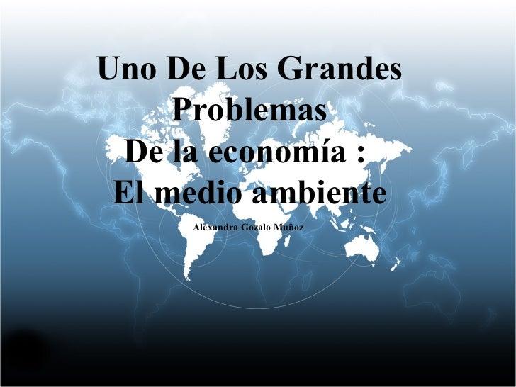 Uno De Los Grandes Problemas De la economía :  El medio ambiente Alexandra Gozalo Muñoz