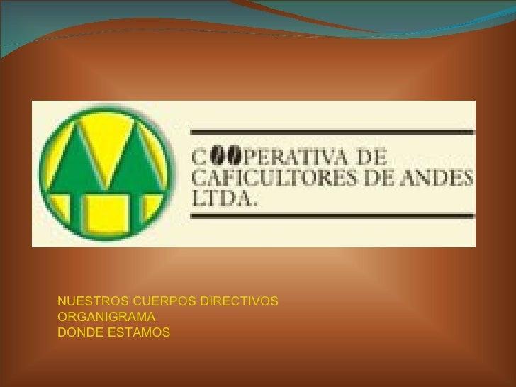 NUESTROS CUERPOS  DIRECTIVOS ORGANIGRAMA DONDE ESTAMOS