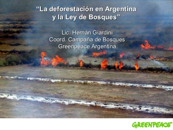 """"""" La deforestación enArgentina  y la Ley de Bosques""""   Lic. Hernán Giardini Coord. Campaña de Bosques Greenpeace Argentina"""