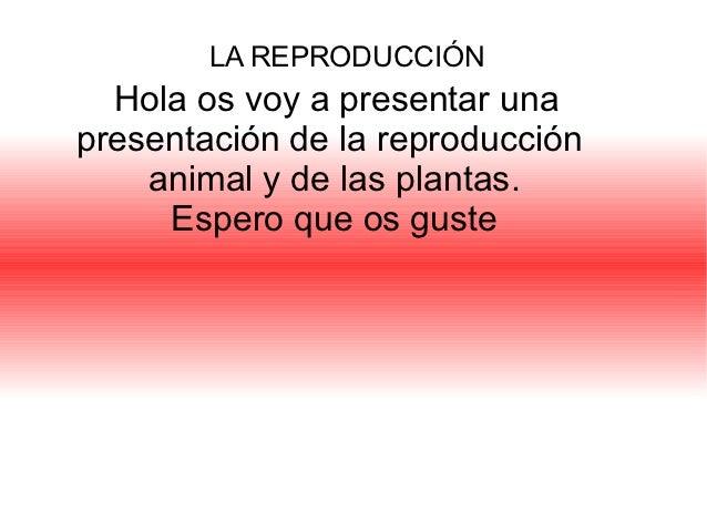 LA REPRODUCCIÓN  Hola os voy a presentar unapresentación de la reproducción    animal y de las plantas.     Espero que os ...