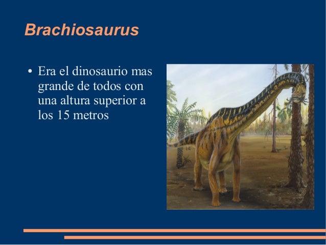 Brachiosaurus● Era el dinosaurio masgrande de todos conuna altura superior alos 15 metros