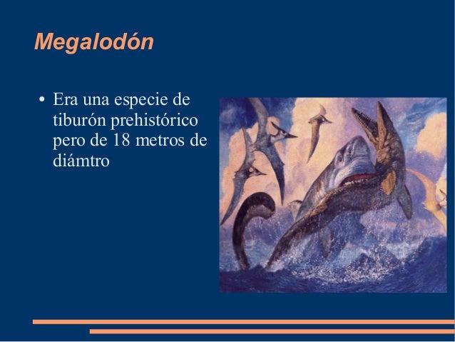 Megalodón● Era una especie detiburón prehistóricopero de 18 metros dediámtro