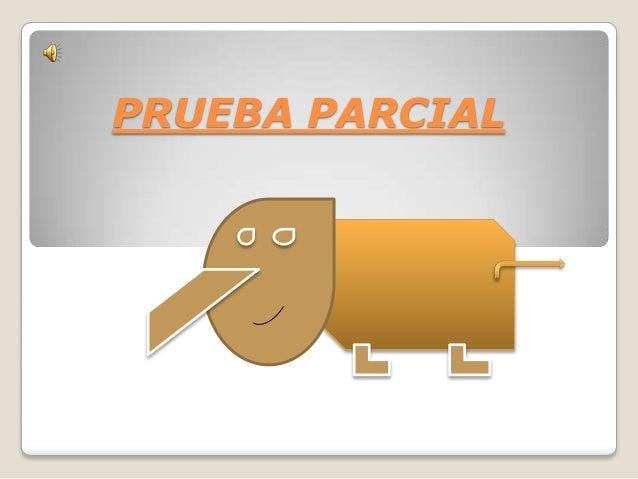 PRUEBA PARCIAL