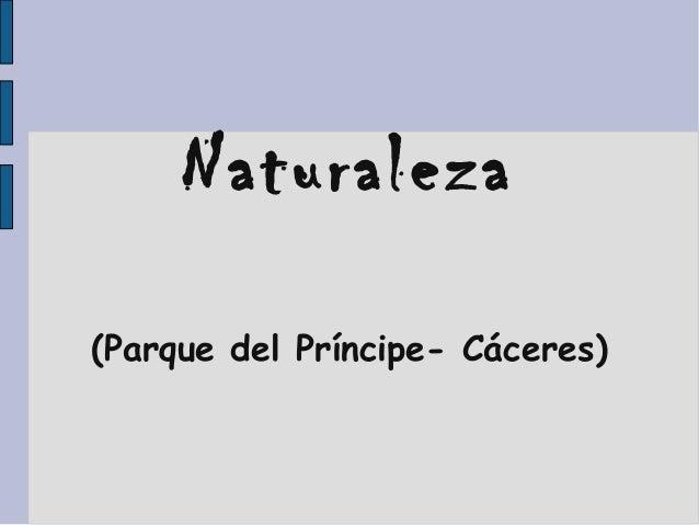 Naturaleza (Parque del Príncipe- Cáceres)