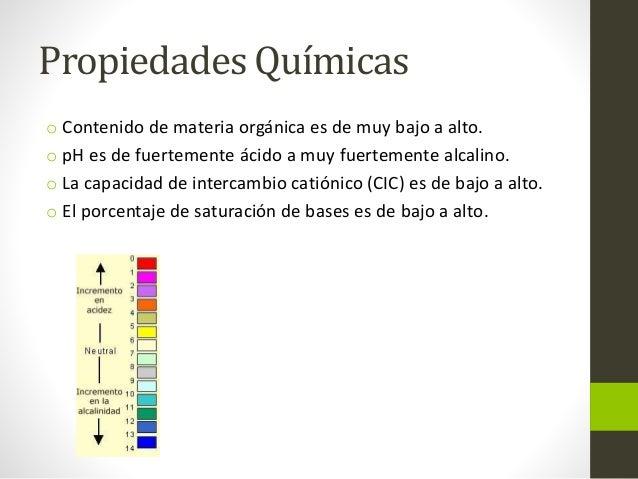Suelos del orden molisol for Cuales son las caracteristicas del suelo