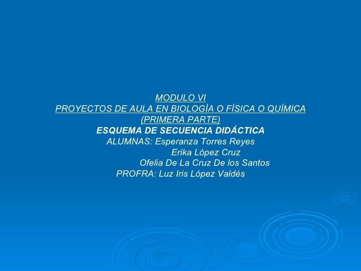 MODULO VI PROYECTOS DE AULA EN BIOLOGÍA O FÍSICA O QUÍMICA (PRIMERA PARTE) ESQUEMA DE SECUENCIA DIDÁCTICA ALUMNAS: Esperan...