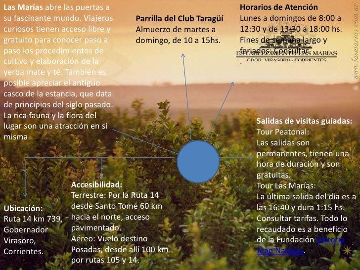 Circuito Yerbatero : Power point circuito yerbatero