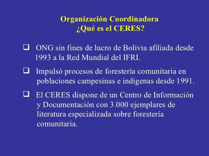 Presentacion CERES Elizabeth Pinto Slide 3