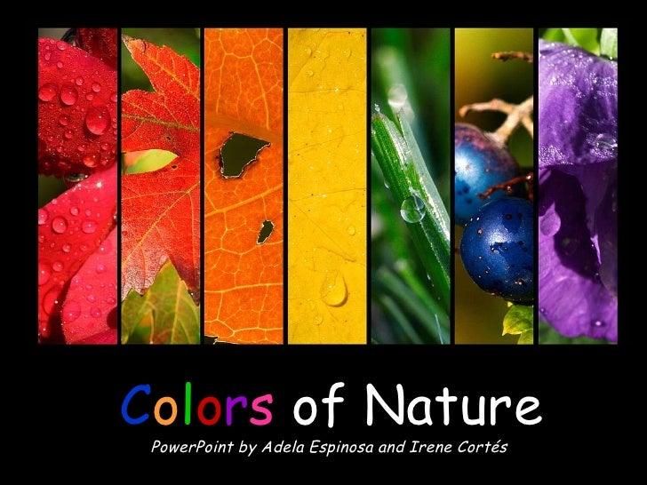 C o l o r s   of Nature PowerPoint by Adela Espinosa and Irene Cortés