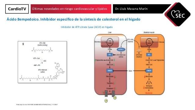 Últimas novedades en riesgo cardiovascular y lípidos Dr. Lluís Masana Marín Pinkosky SL et al. NATURE COMMUNICATIONS 2016,...