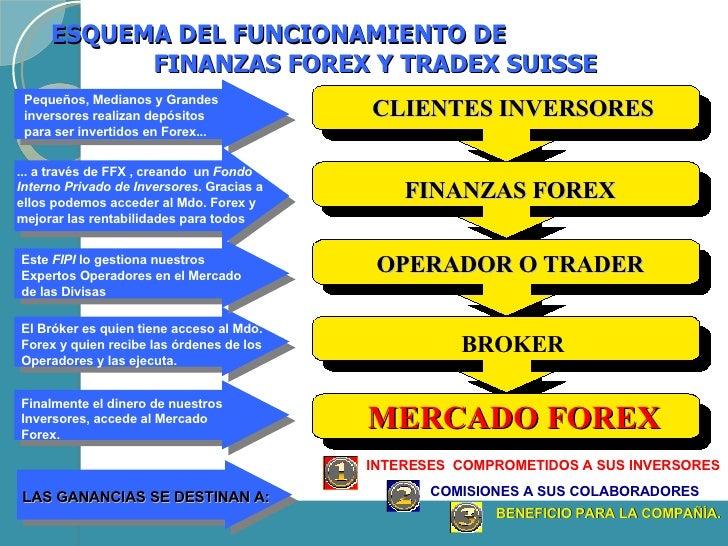 Ffx finanzas forex