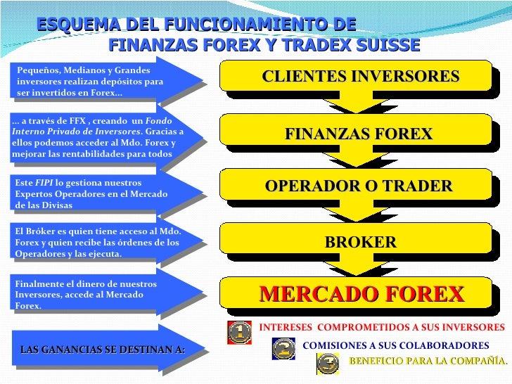 Cual es el mejor broker de forex en mexico