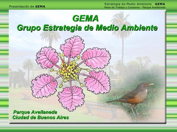 Estrategia de Medio Ambiente          GEMA Presentación de GEMA             Mesa de Trabajo y Consenso - Parque Avellaneda...