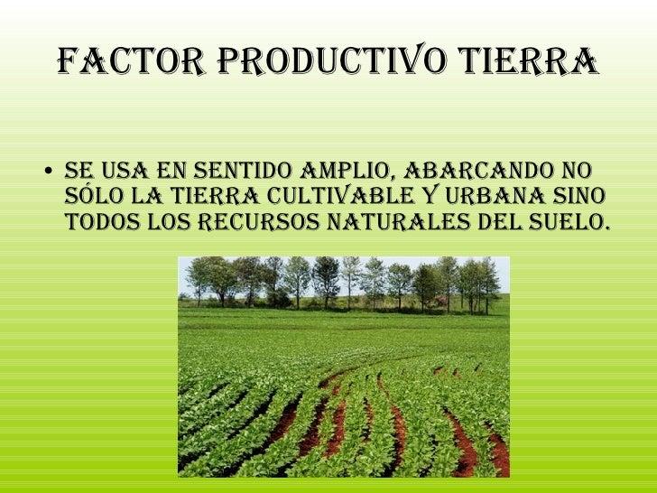 Factor productivo Tierra <ul><li>Se usa en sentido amplio, abarcando no sólo la tierra cultivable y urbana sino todos los ...
