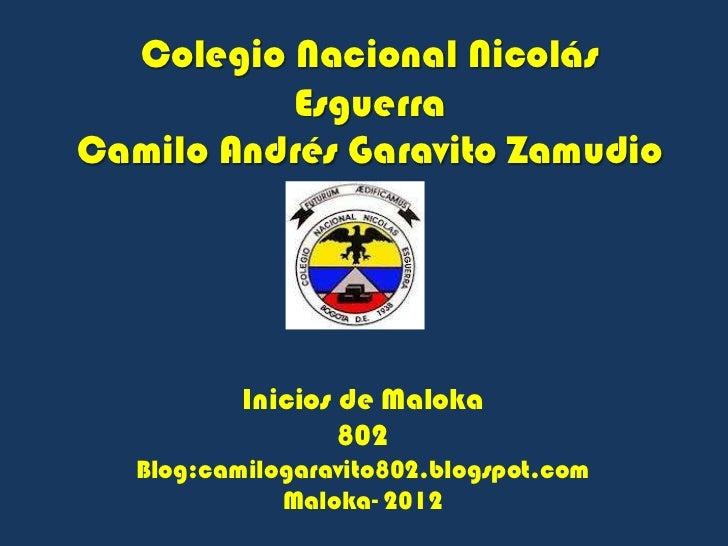 Colegio Nacional Nicolás          EsguerraCamilo Andrés Garavito Zamudio           Inicios de Maloka                   802...