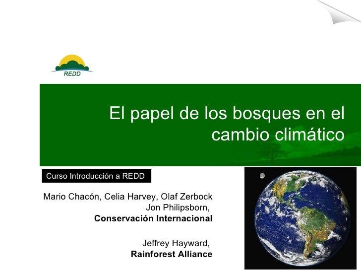 El papel de los bosques en el cambio climático Mario Chacón,  Celia Harvey, Olaf Zerbock Jon Philipsborn,  Conservación In...