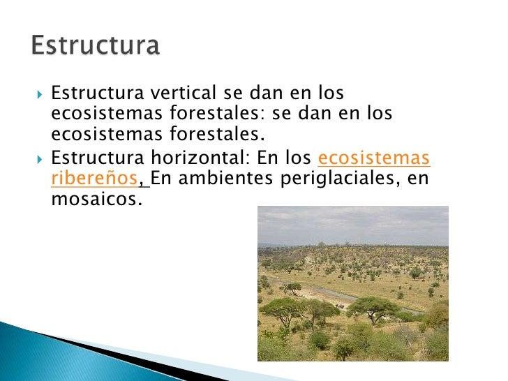 Presentacion1 Pptx