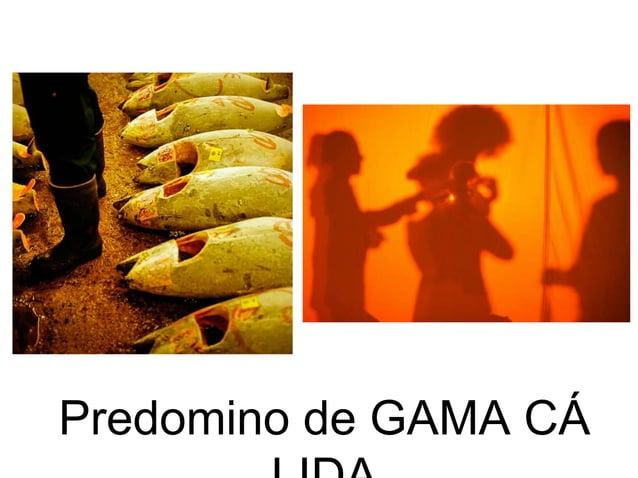 Predomino de GAMA CÁ