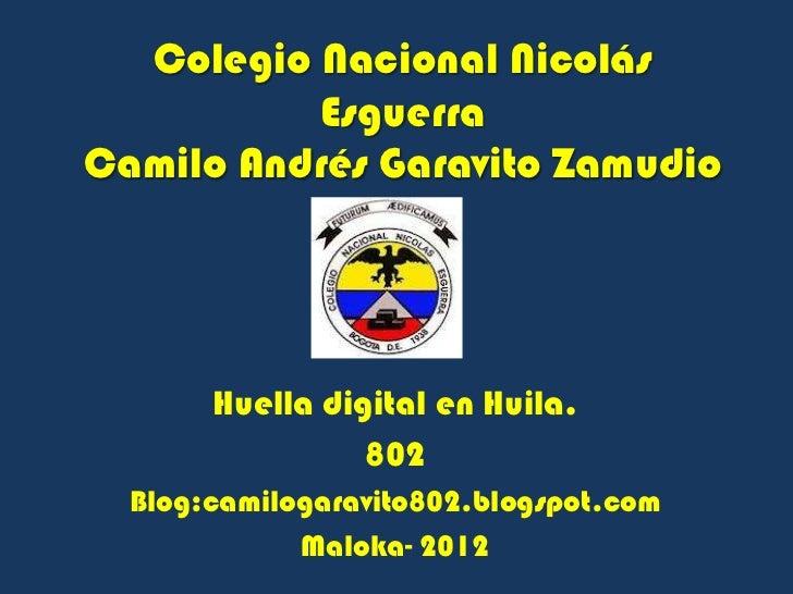 Colegio Nacional Nicolás          EsguerraCamilo Andrés Garavito Zamudio       Huella digital en Huila.                 80...