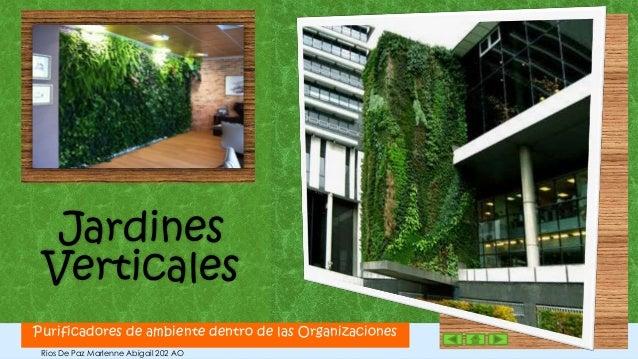 Jardines VerticalesPurificadores de ambiente dentro de las Organizaciones   1 Rios De Paz Marlenne Abigail 202 AO