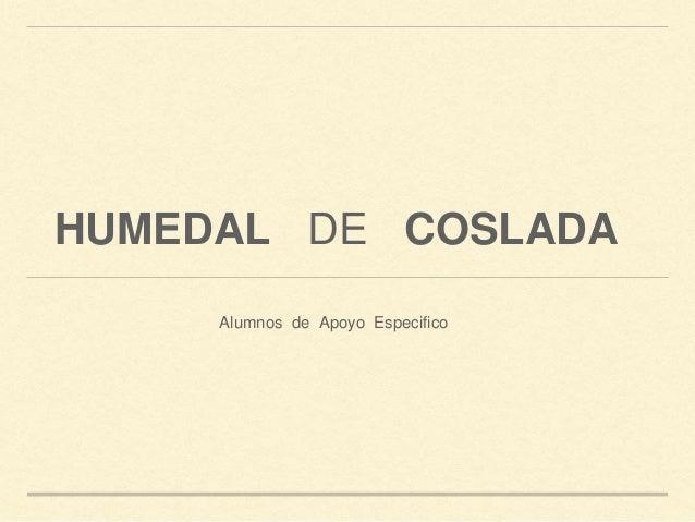 HUMEDAL DE COSLADA Alumnos de Apoyo Especifico