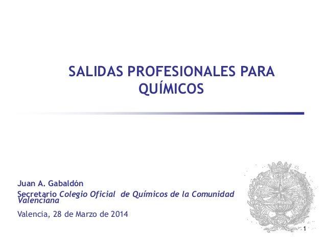 1 SALIDAS PROFESIONALES PARA QUÍMICOS Valencia, 28 de Marzo de 2014 Juan A. Gabaldón Secretario Colegio Oficial de Químico...