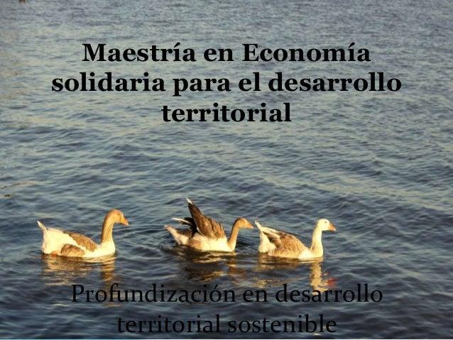 Maestría en Economía solidaria para el desarrollo territorial Profundización en desarrollo territorial sostenible