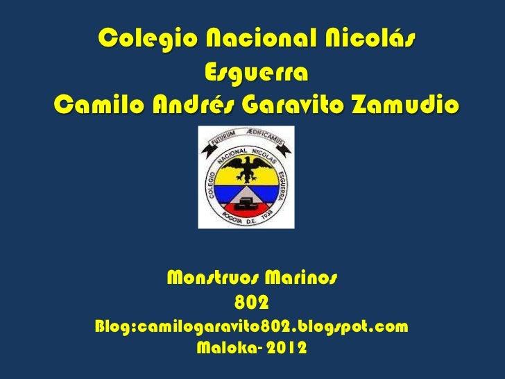 Colegio Nacional Nicolás          EsguerraCamilo Andrés Garavito Zamudio           Monstruos Marinos                  802 ...