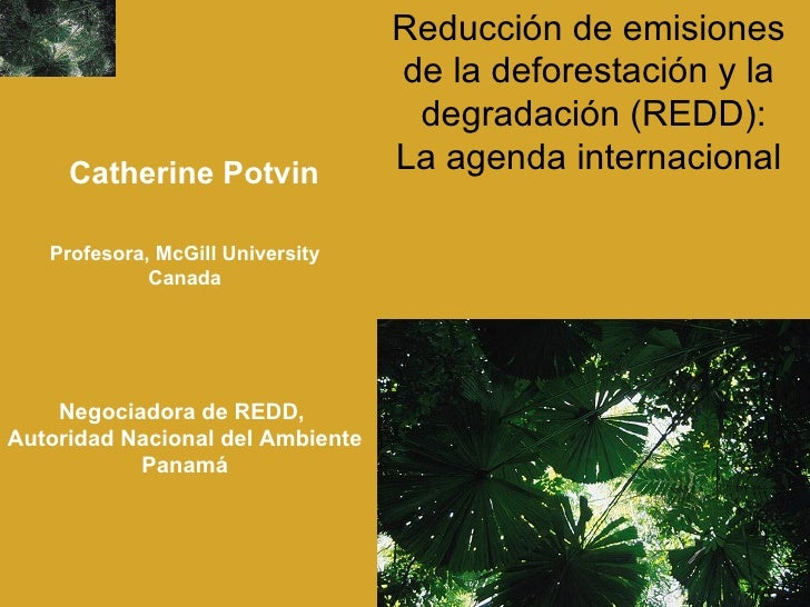 Reducción de emisiones  de la deforestación y la  degradación (REDD): La agenda internacional   Profesora,  McGill Univers...