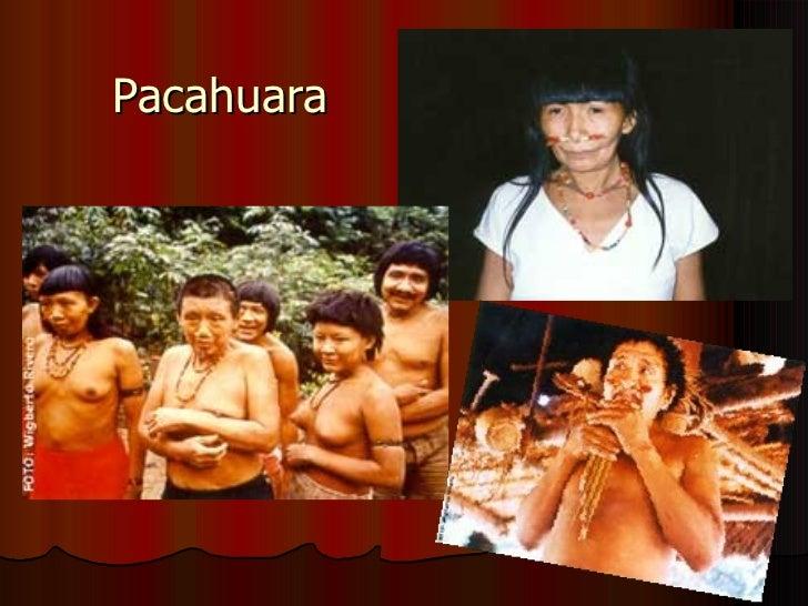 Pacahuara