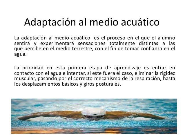 Adaptación al medio acuático La adaptación al medio acuático es el proceso en el que el alumno sentirá y experimentará sen...