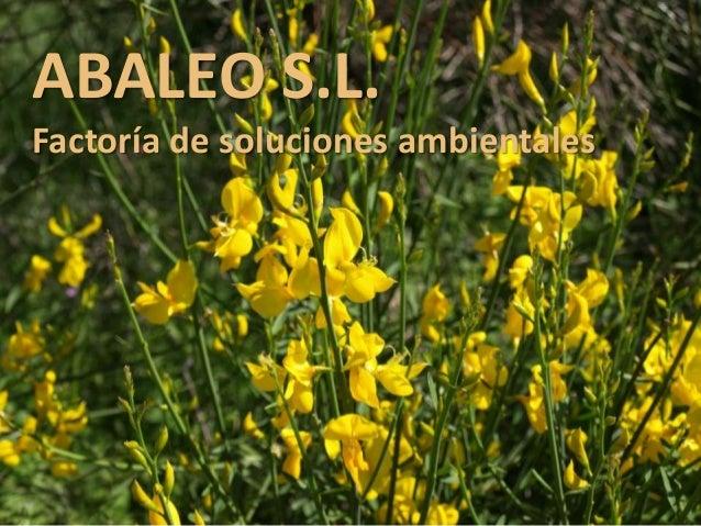 ABALEO S.L. Factoría de soluciones ambientales