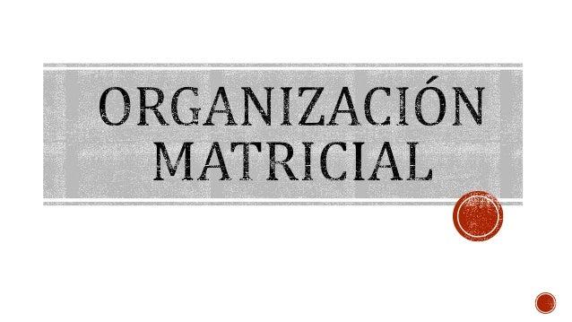  Se refiere a los distintos tipos, sistemas o modelos de estructuras organizacionales que se  pueden implantar en un orga...