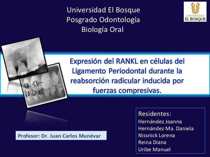 Universidad El Bosque                   Posgrado Odontología                       Biología Oral                          ...