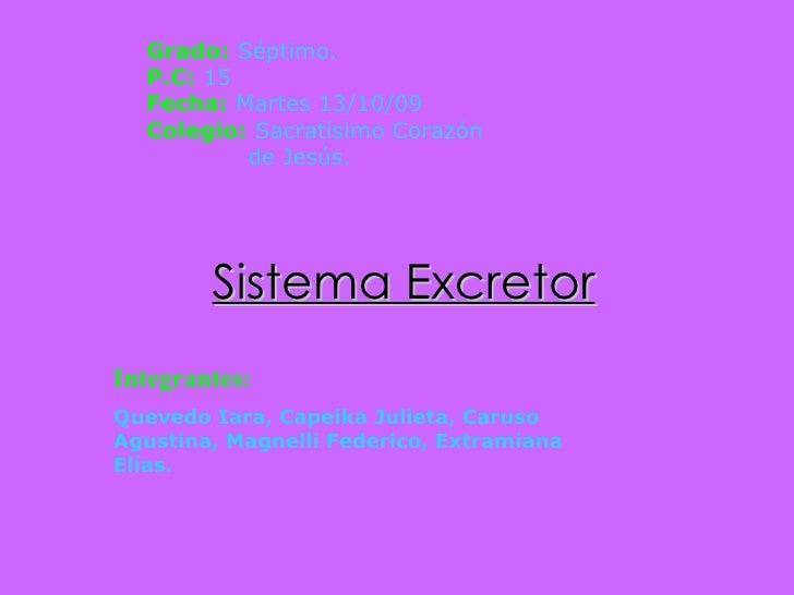 Sistema Excretor Integrantes:   Quevedo Iara, Capeika Julieta, Caruso Agustina, Magnelli Federico, Extramiana Elías. Grado...