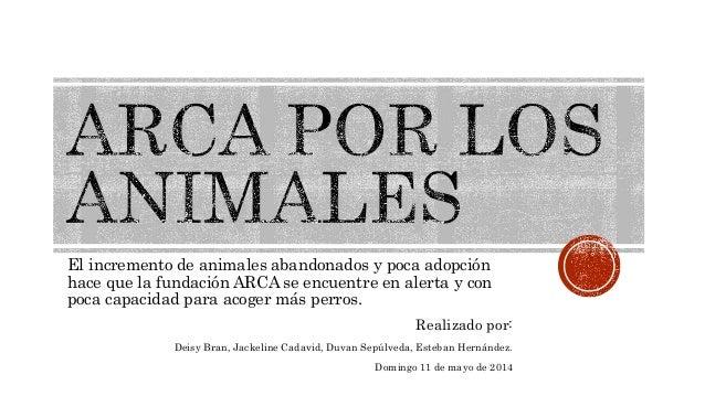 El incremento de animales abandonados y poca adopción hace que la fundación ARCA se encuentre en alerta y con poca capacid...