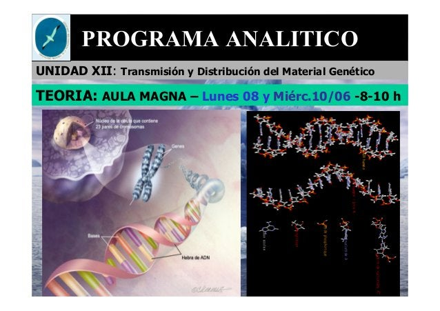 PROGRAMA ANALITICO UNIDAD XII: Transmisión y Distribución del Material Genético TEORIA: AULA MAGNA – Lunes 08 y Miérc.10/0...