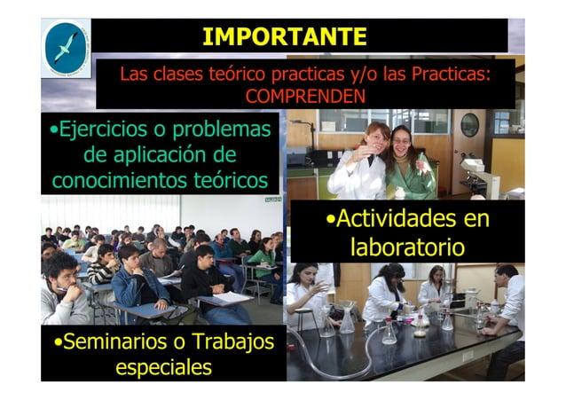 IMPORTANTE •Ejercicios o problemas de aplicación de conocimientos teóricos •Seminarios o Trabajos especiales Las clases te...