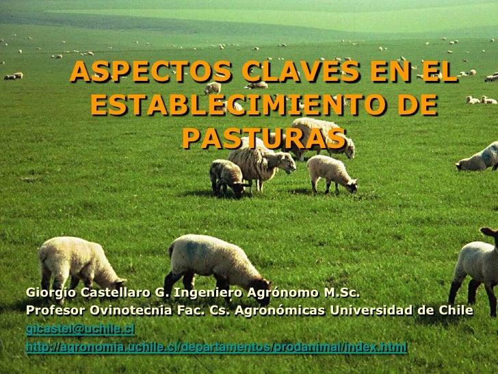 ASPECTOS CLAVES EN EL       ESTABLECIMIENTO DE            PASTURASGiorgio Castellaro G. Ingeniero Agrónomo M.Sc.Profesor O...