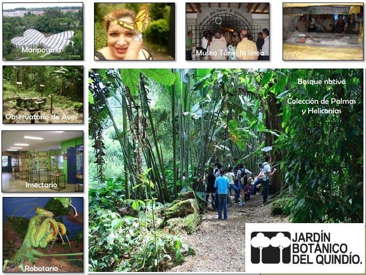 Mariposario<br />Museo Túnel la línea<br />Bosque nativo<br />Colección de Palmas <br />y Heliconias <br />Observatorio de...