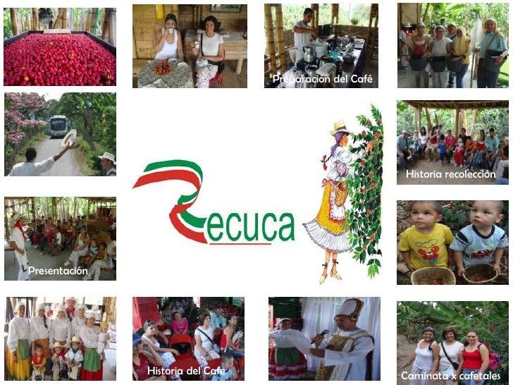 Preparación del Café<br />Historia recolección<br />Presentación<br />Historia del Cafe<br />Caminata x cafetales<br />
