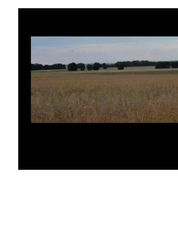 Día 3 de Agosto: Riesa-DresdeDistancia: 57 kilómetrosAscenso acumulado: 179 mDescenso acumulado: 186 m