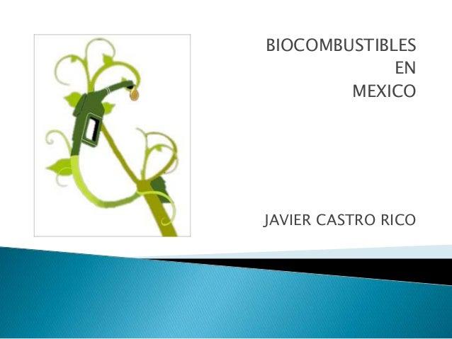 BIOCOMBUSTIBLES EN MEXICO  JAVIER CASTRO RICO