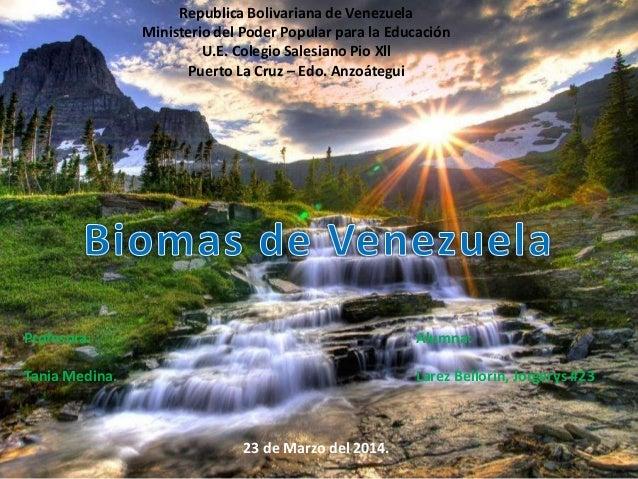 Republica Bolivariana de Venezuela Ministerio del Poder Popular para la Educación U.E. Colegio Salesiano Pio Xll Puerto La...