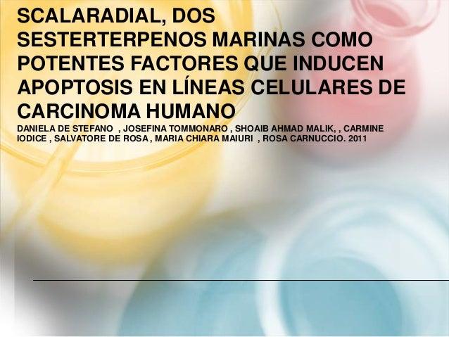 SCALARADIAL, DOS SESTERTERPENOS MARINAS COMO POTENTES FACTORES QUE INDUCEN APOPTOSIS EN LÍNEAS CELULARES DE CARCINOMA HUMA...