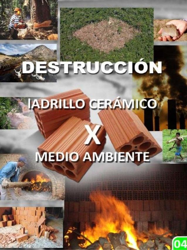Arquitecto JANER MAURICIO RODRÍGUEZ RODRÍGUEZ  HABITAT NATURAL DISEÑO Y CONSTRUCCION